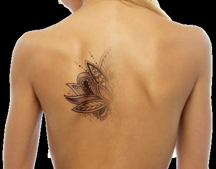 PMU/Tattoo Removal Class